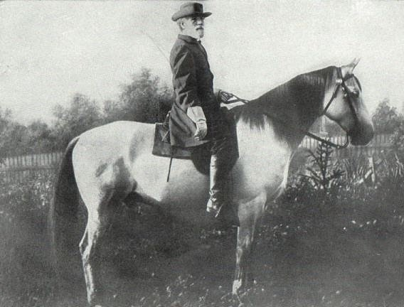 Robert E Lee on Traveller