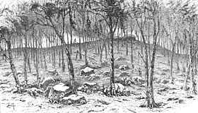 Fighting at Culp's Hill